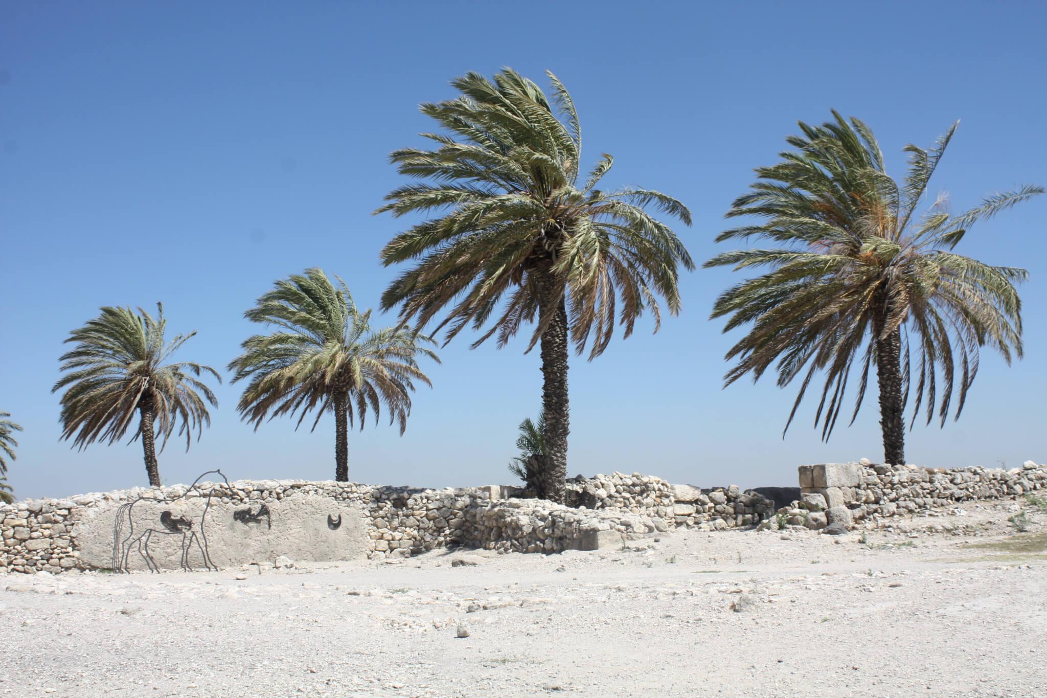 Megiddo, Israel