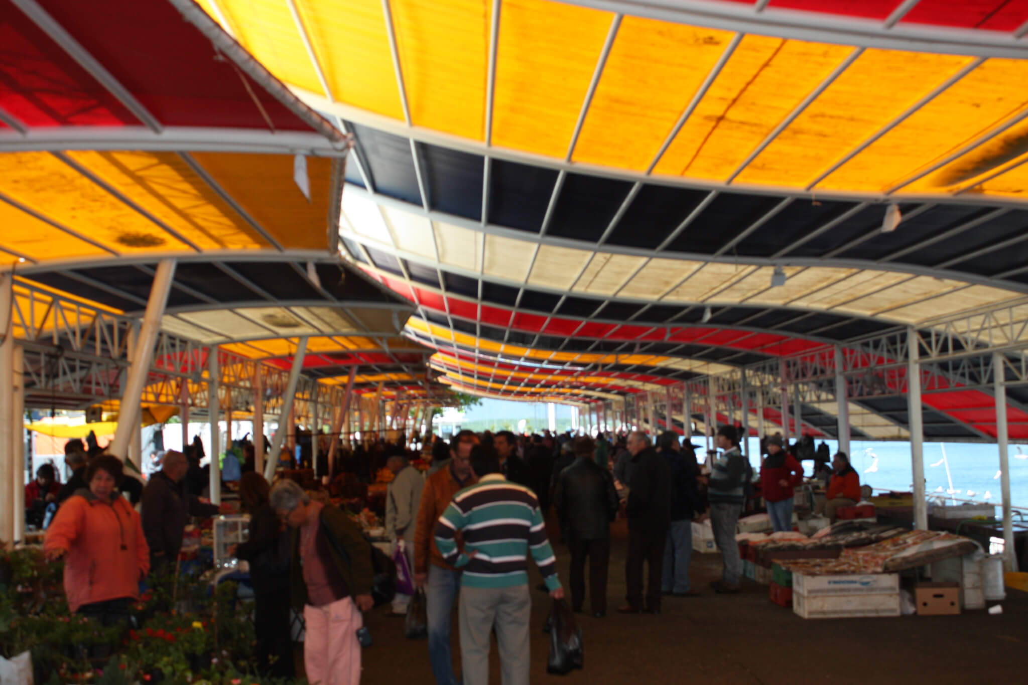 Fish market, Valdivia