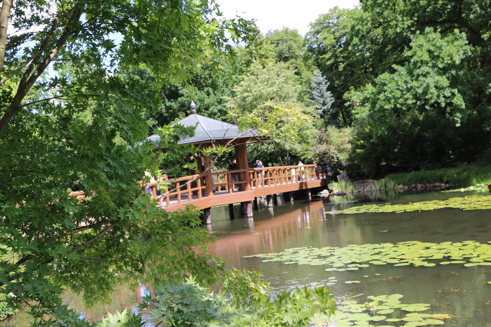 Japanese garden, Wroclaw