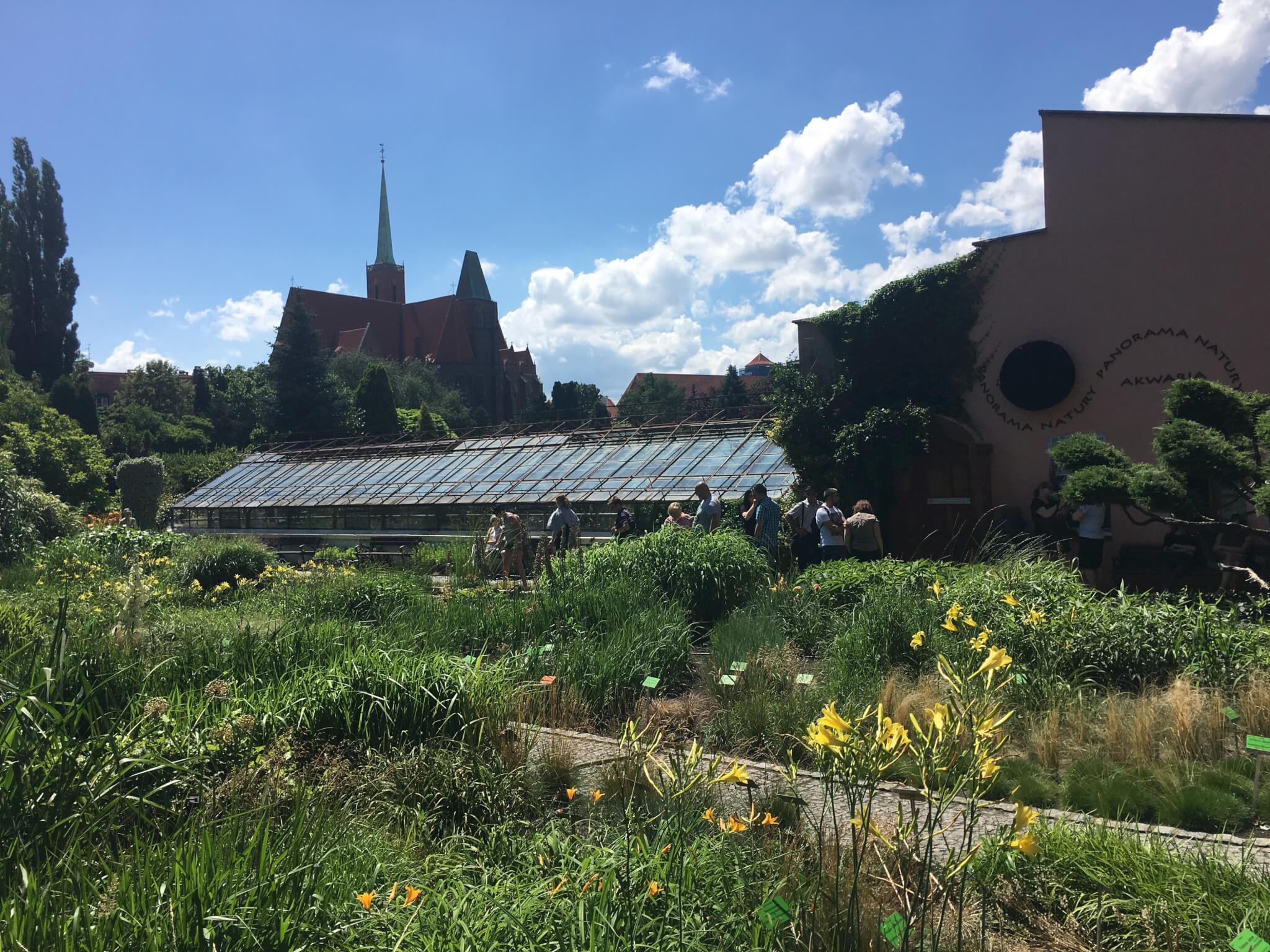 Botanical garden, Wroclaw