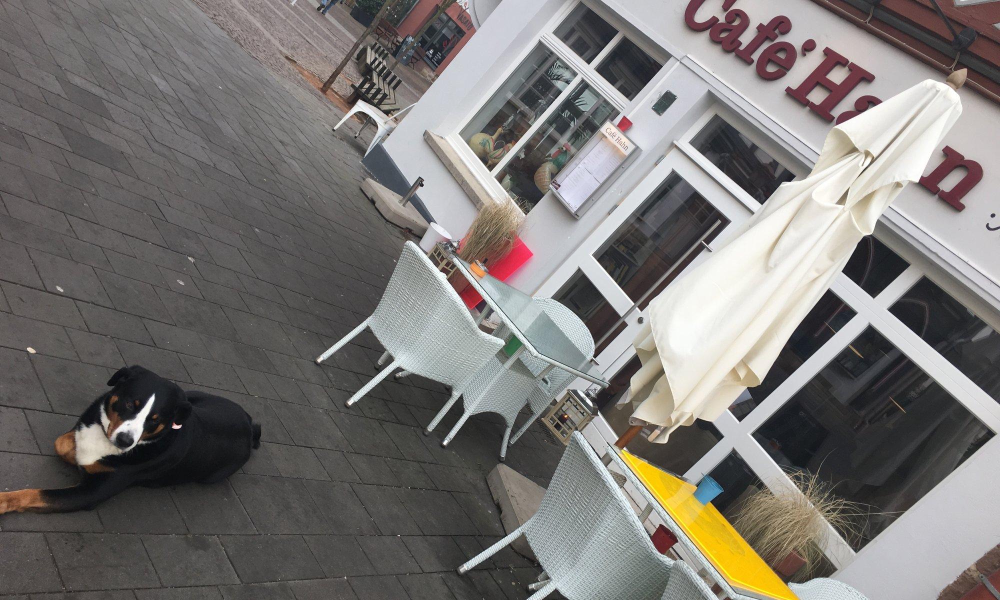 Café Hahn, Fritzlar