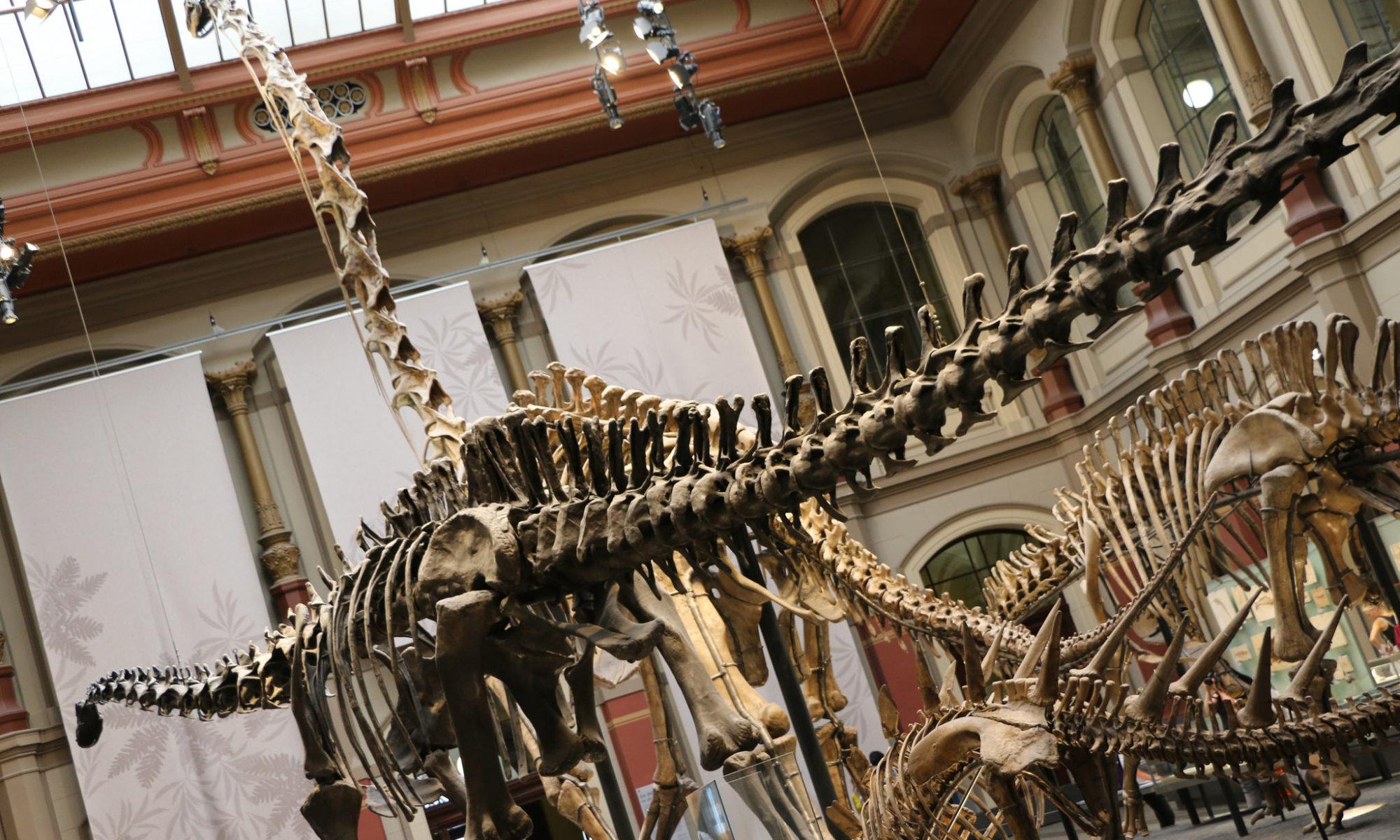 Dinosaurs, Naturkundemuseum, Berlin