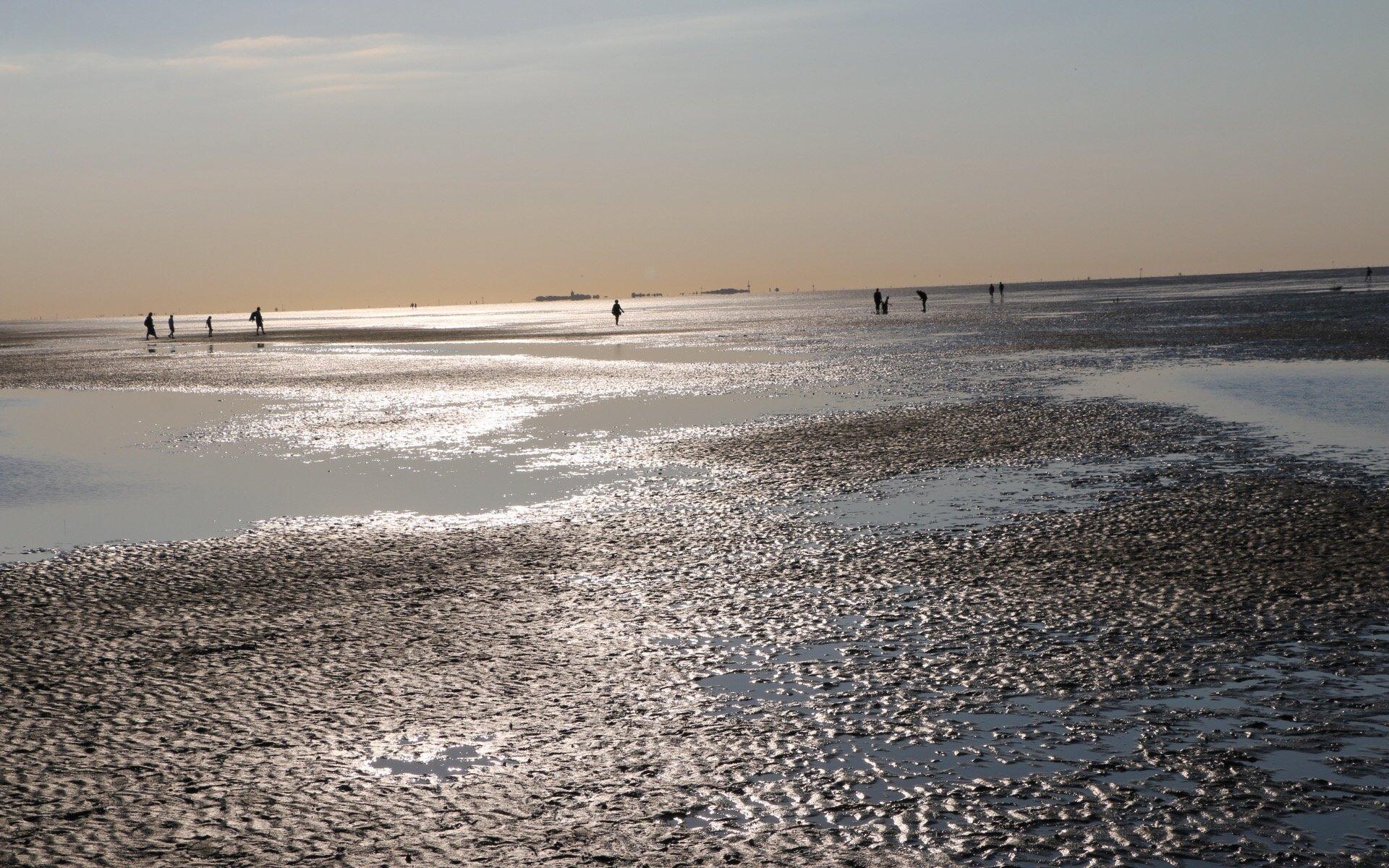 Wattenmeer, Cuxhaven