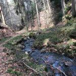 Grundbachtal, Laubach, Hann. Münden