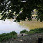 Where Werra and Fulda meet, Hann. Münden