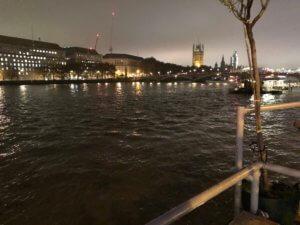 View from Tamesis Dock, London