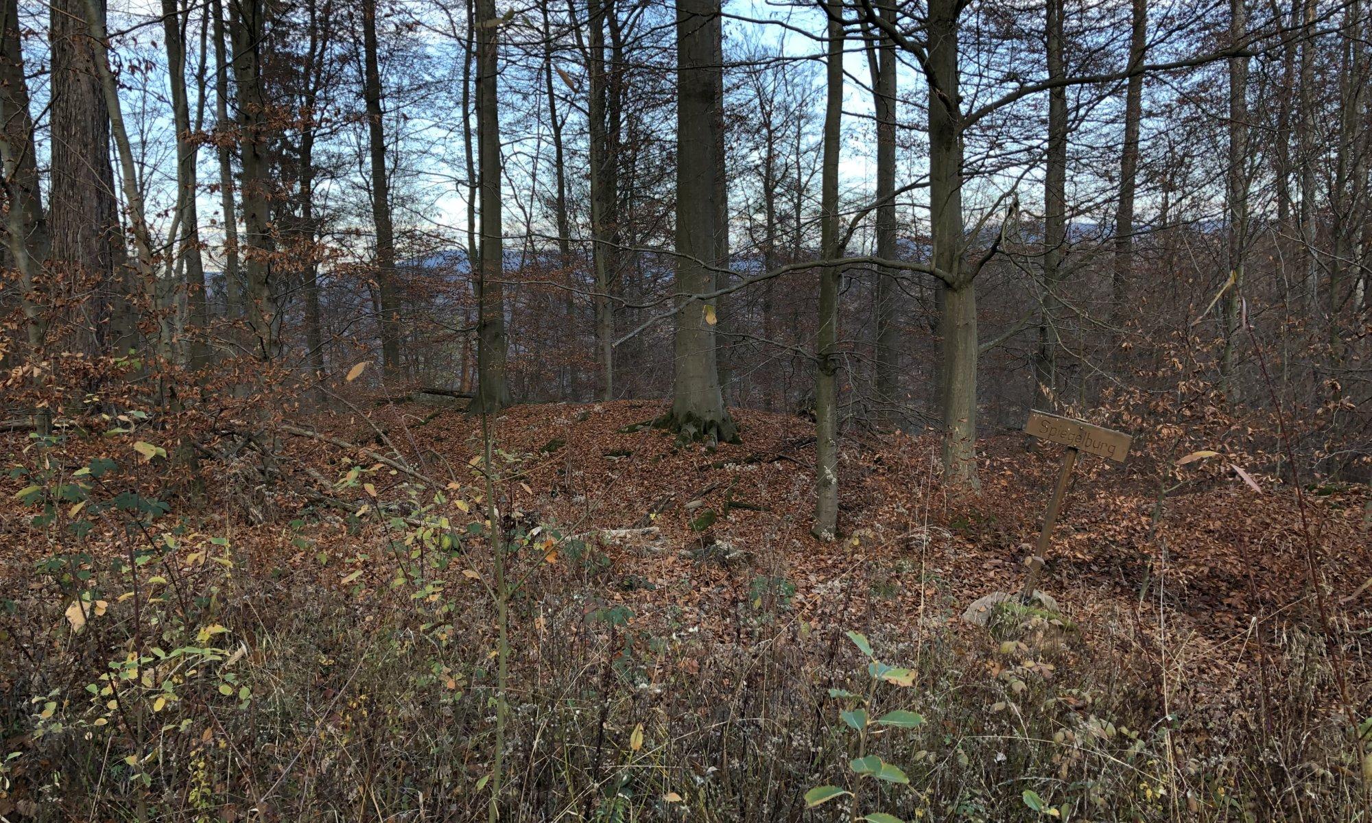 Ruine Spiegelburg, Laubach, Hann. Münden