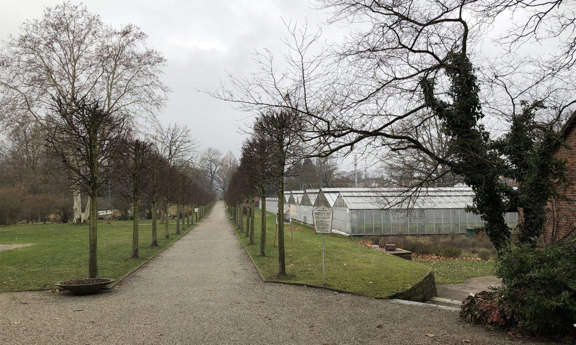 Botanischer Garten, Kassel
