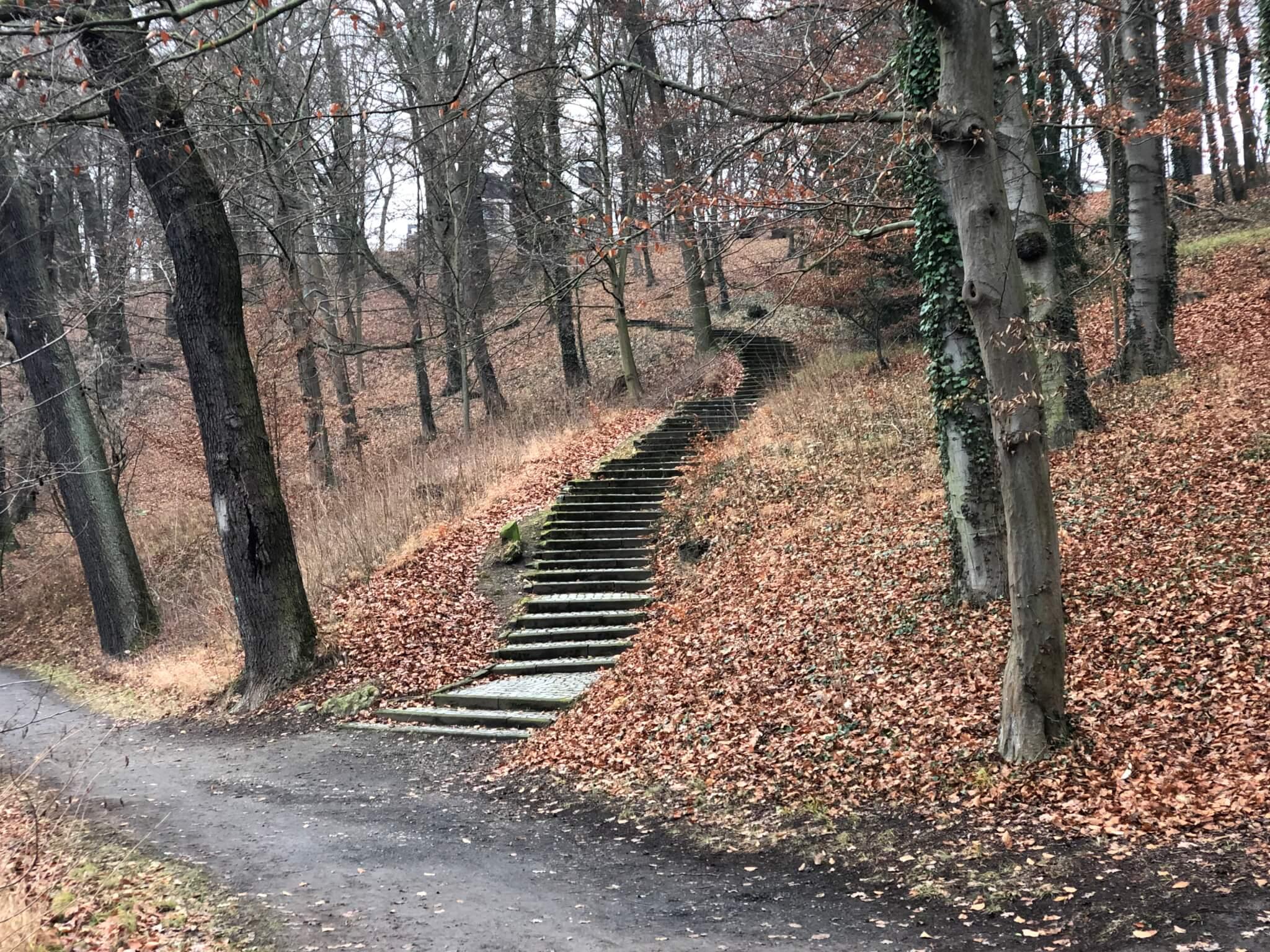 Park Schönfeld, Kassel