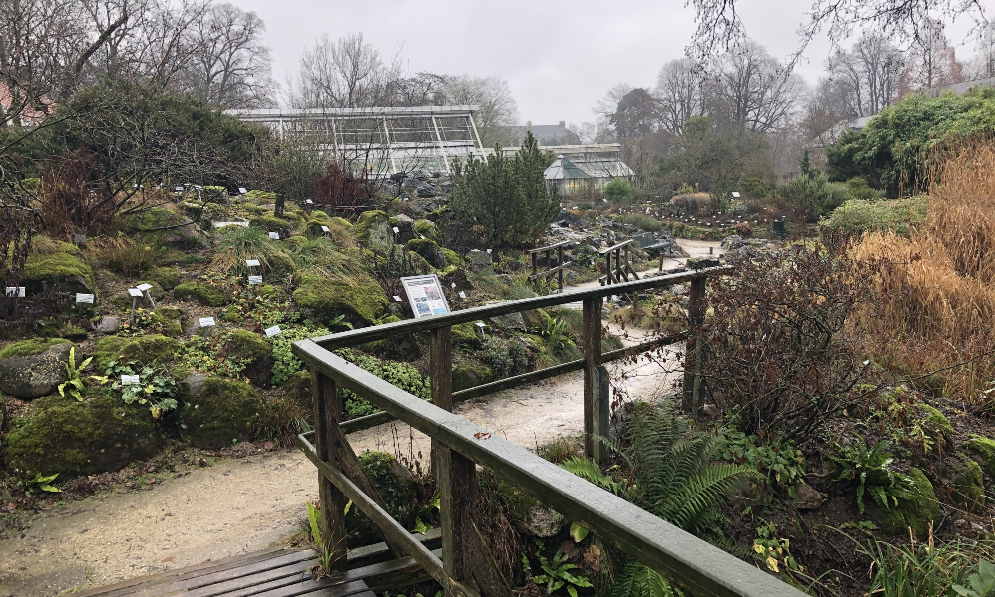 Botanischer Garten, Münster