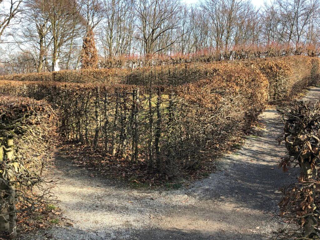 Maze, Löwenburg, Bergpark Wilhelmshöhe, Kassel