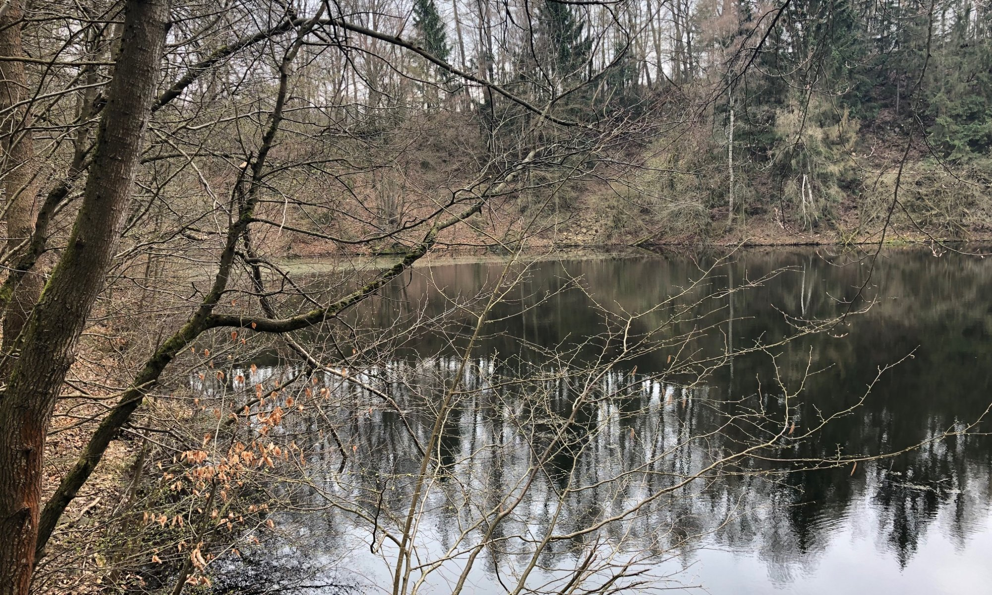 Silbersee, Habichtswald, Kassel