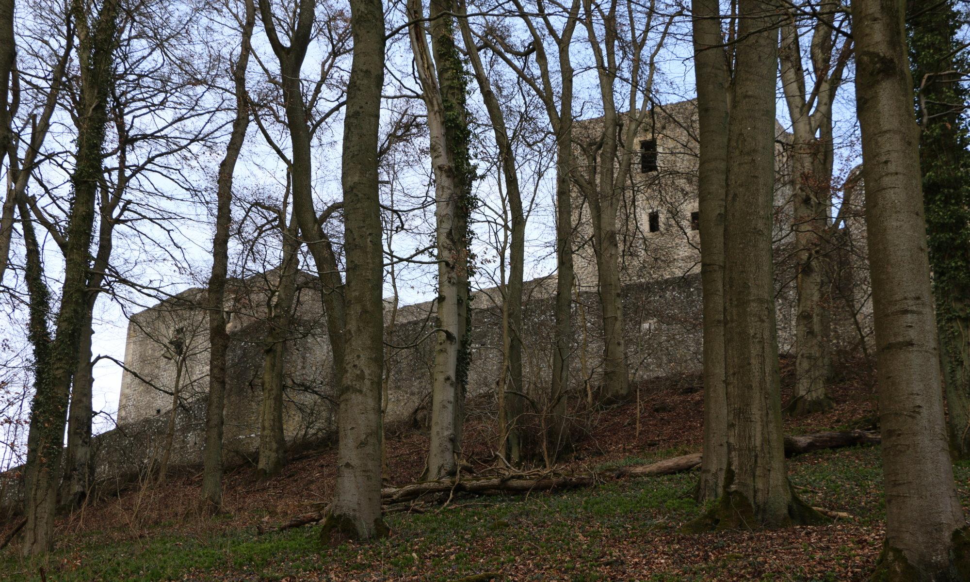 Weidelsburg, Wolfhagen