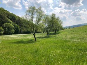 Heckershausen, Ahnatal