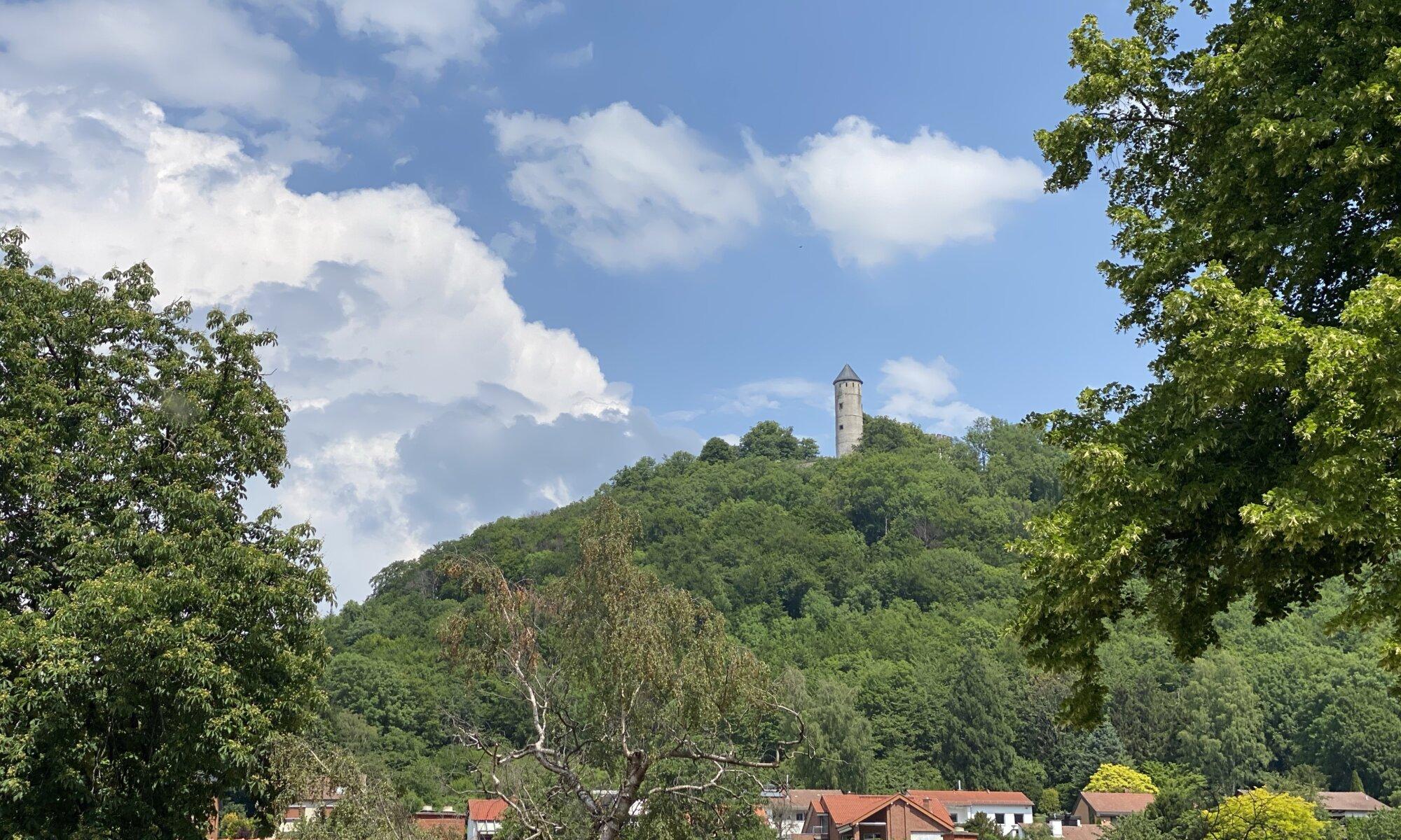 Burg Plesse, Bovenden