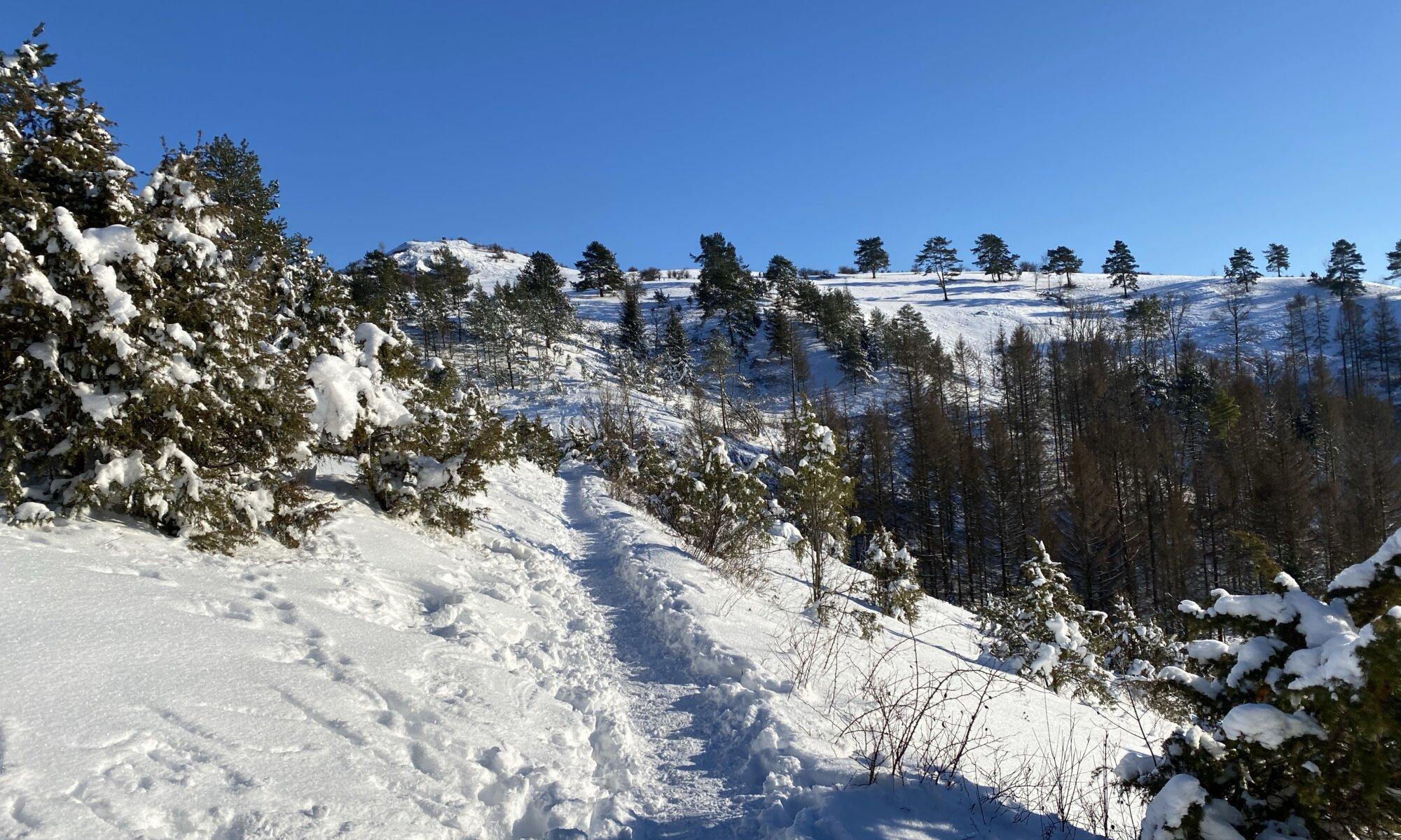 Alpenpfad, Dörnberg, Zierenberg