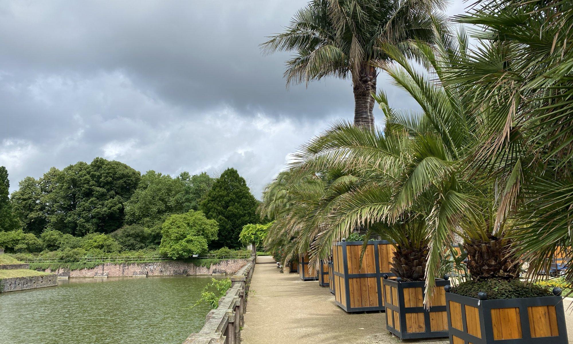 Palmengarten, Bad Pyrmont